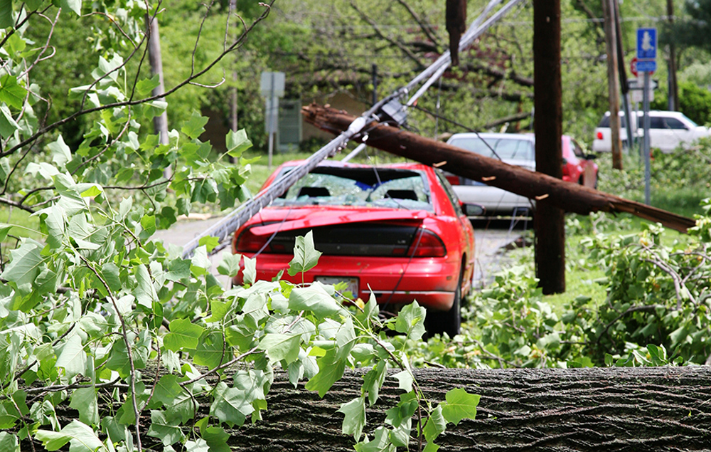 Car and Downed Power Line
